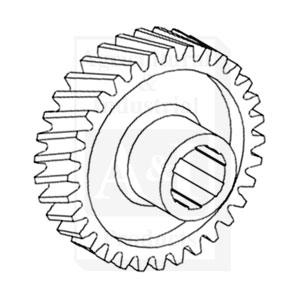 Sector, Steering Worm Gear