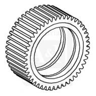 Diffential Pinion Gear