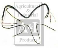 Harness- 6 Volt